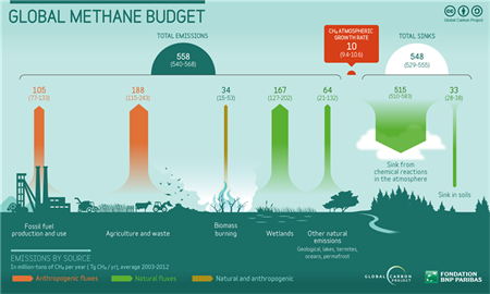 Global methane sources