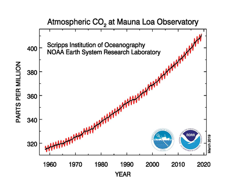 A chart showing the steadily increasing concentrations of carbon dioxide in the atmosphere (in parts per million) observed at NOAA's Mauna Loa Observatory over the course of 60 years.